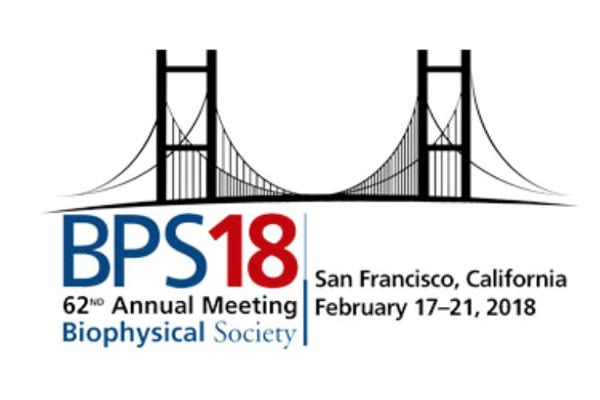 BPS 18