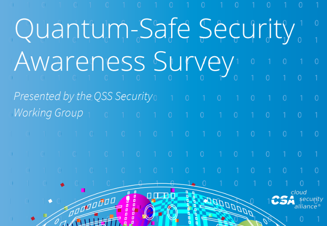 Quantum-Safe Security Awareness Survey