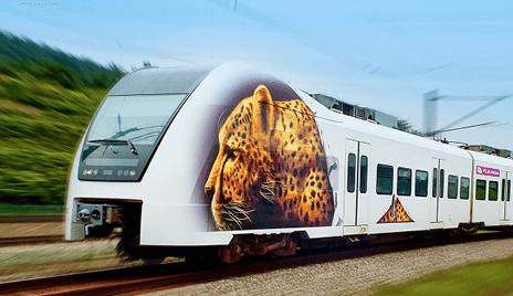 Cheetah print on a train